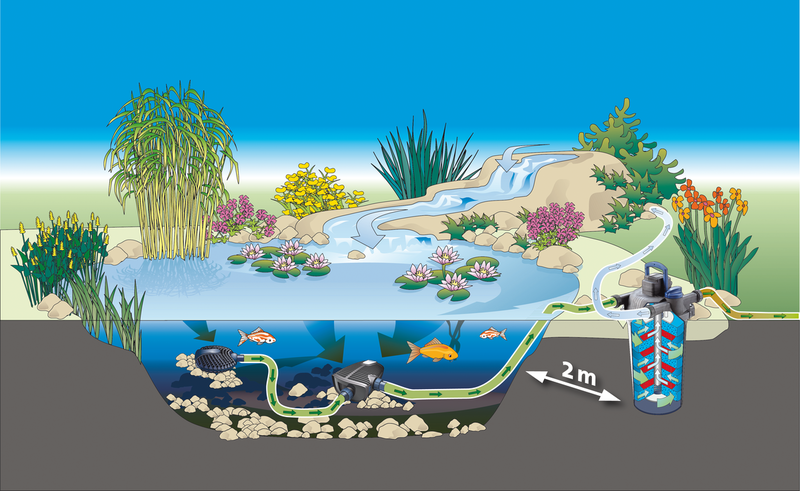 pond layout 1
