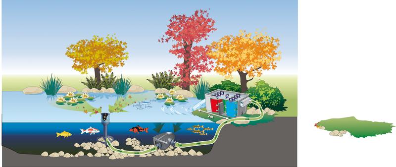pond layout 2